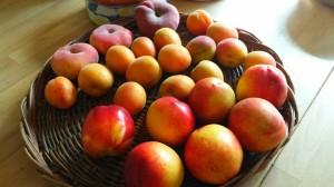 季節の果物で楽しめます