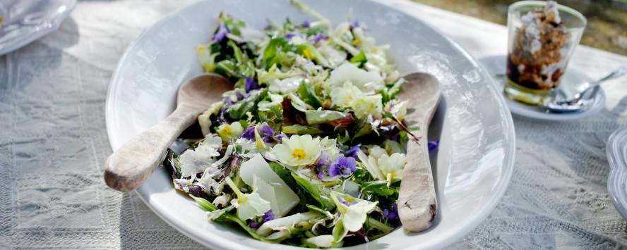春の野の花のサラダ