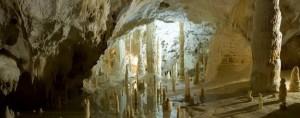自然の不思議を教えてくれる鍾乳洞内部