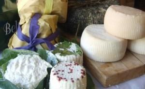 地産チーズに舌鼓